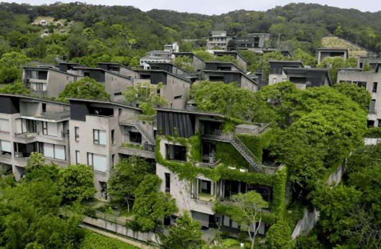 24户中产集资1.5亿买下一片地,造房抱团养老